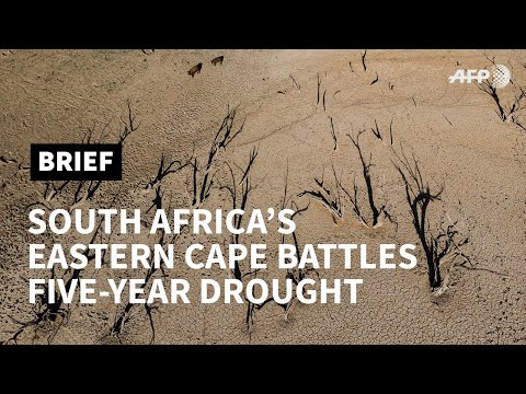 South Africa: Eastern Cape battles brutal five-year drought | AFP