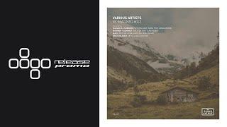 PREMIERE: Mariner + Domingo - Walk On (Eric Lune Remix) [Sound Avenue]