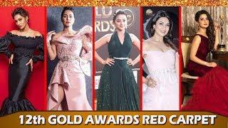 Gold Awards 2019:Many Bollywood Celebrities Attended   Mix Pitara