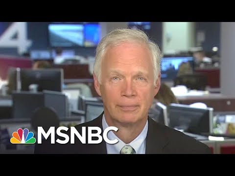 Senator Ron Johnson Debates Guarantees Vs. Promises In GOP Health Bill | MTP Daily | MSNBC