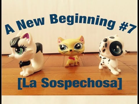 A New Beginning ST #7 [La Sospechosa]