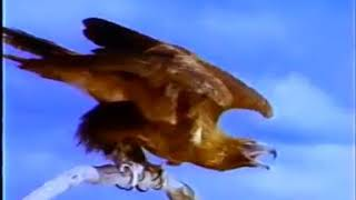 Iklan Jadul Kacang Garuda Burung mengambil Kacang 1997 1998