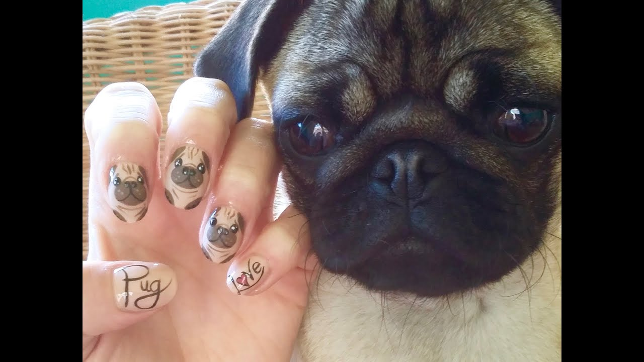 Cute Pug Nail Art Youtube