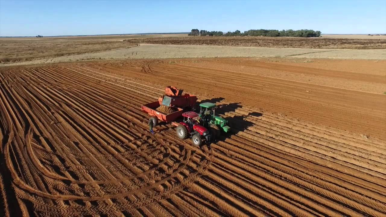 FARMING IN SOUTH AFRICA