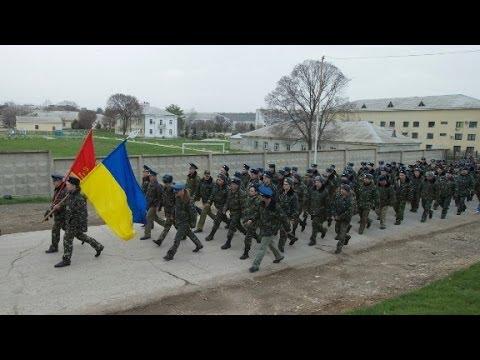 Would Ukraine's military
