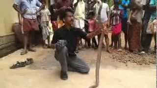 Indian Cobra Vs Abbas Kaippuram