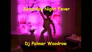 Saturday Night Fever by Dj Palmer Woodrow