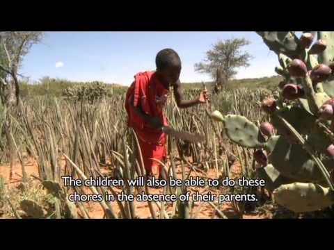 Reflections on Africa's Indigenous Knowledge on Parenting - Part 1