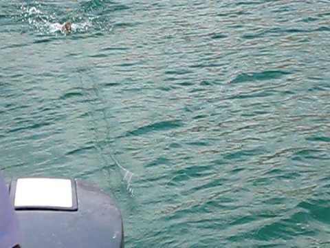 angola pre historik boat fishing style.AVI
