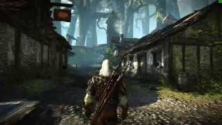 The Witcher 2 Assassins of Kings - GTX 980 Ultra Settings + Ubersampling Benchmark