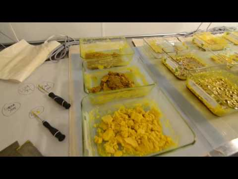 HOW DABS ARE MADE - touring a cannabis extraction facility