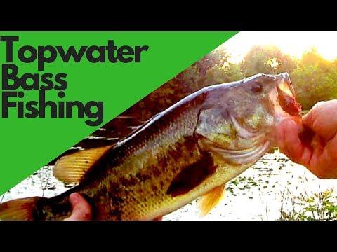 Fishing Topwater at Quarton Lake Michigan