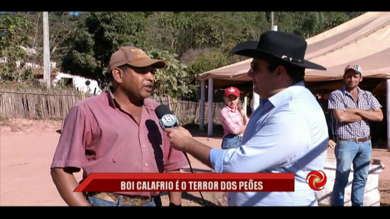 """""""Boi calafrio"""" é o terror do Sul de Minas - YouTube"""