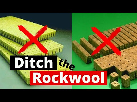 DIY Hydroponics / Why you don't need Rockwool