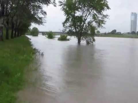 Hochwasser in Wien 3.06.2013 / Flood waters in Vienna, Danube Island