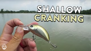 Shallow Crankbait Fishing In Warm Water For Big Reaction Strikes