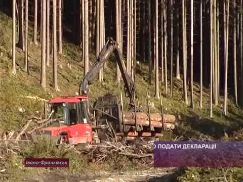 До 20 вересня необхідно подати декларації з плати на лісові землі