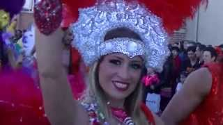 Carnaval d'Albi 2014 avec Meu Brasil Show