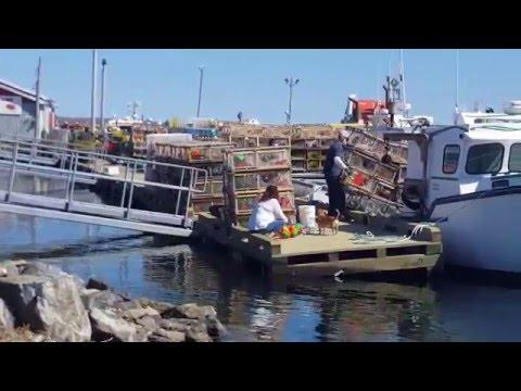 Preparations For Lobster Season Opening 13 May 2016-North Sydney, Cape Breton