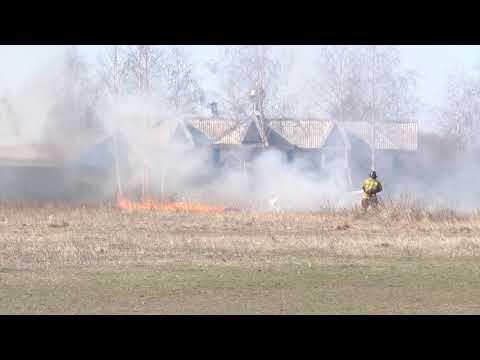 В Заволжском районе Ульяновска потушили горящую траву