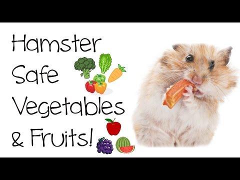 Hamster Safe Vegetables & Fruits