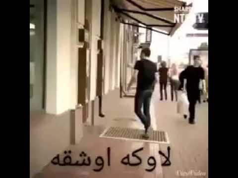 Mikail Uçar - Le şirinamıne 🎶
