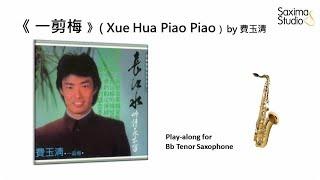 (Bb Tenor)《 一剪梅 》( Xue Hua Piao Piao ) (Concert G minor) / 費玉清 – Playalong