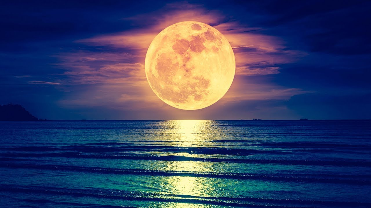 Deep Sleep Music, Insomnia, Sleep Therapy, Calm Music, Sleep Meditation, Study, Relax, Sleep,☯1996