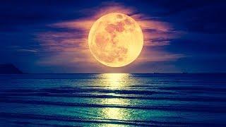 Deep Sleep Music 24/7, Insomnia, Sleep Therapy, Calm Music, Sleep Meditation, Study, Relax, Sleep