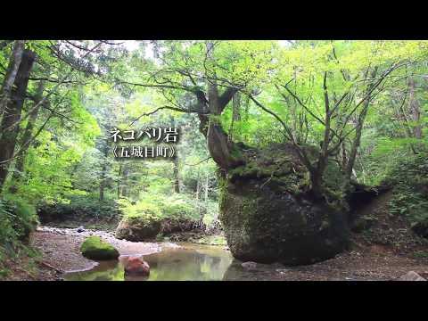秋田059ネコバリ岩五城目町《岩の上の小さな森》