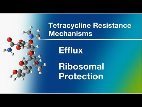 Tetracycline Mechanism of Action and A New Antibiotic in Development