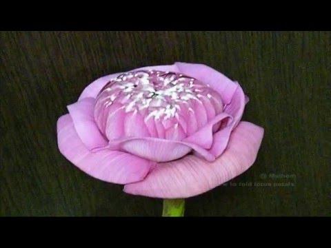 How to fold lotus petals. วิธีพับกลีบดอกบัว (3)