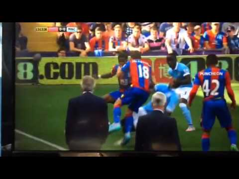 FIGHT: MANUEL PELLEGRINI VS ALAN PARDEW