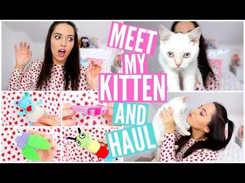 Meet My Kitten & Kitten Haul! ♡