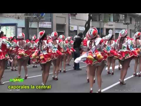 Plaza De Mayo - Entrada Folklorica Integración Bolivia Argentina 2015