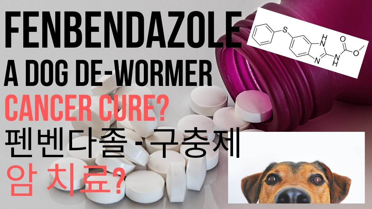 Albendazole Rumoured To Cure Colon Cancer Everything You Need To Know Youtube