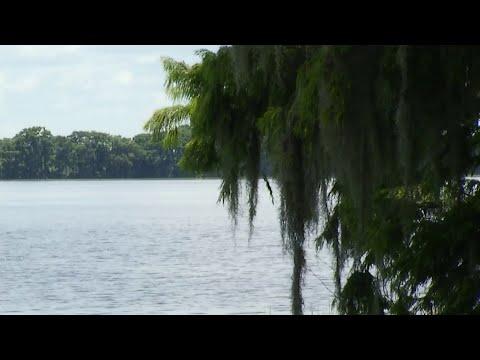 Monster gator chases teen up tree