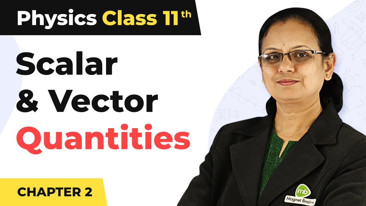 Download Classification of Scalar and Vector Quantities - Motion in a Straight Line | Class 11 Physics