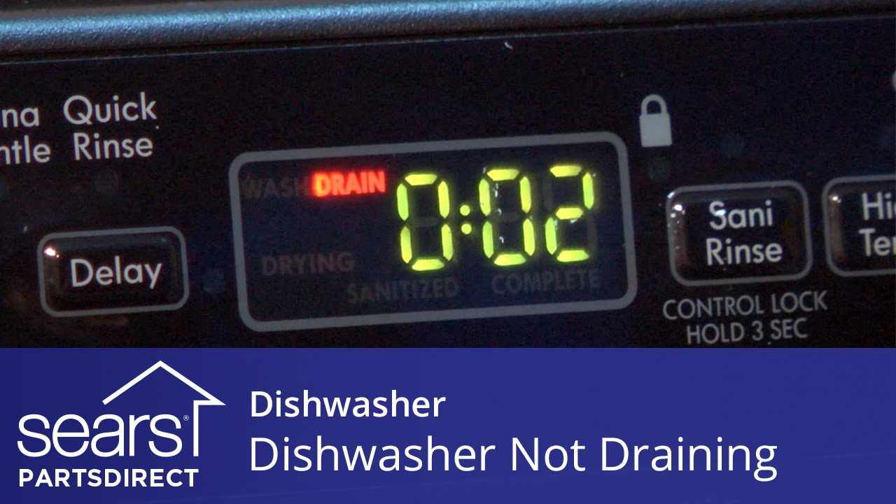 Dishwasher Won't Drain? All the Easy Fixes You Need to Know