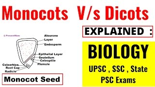 Monocots  V/s Dicots  Seeds Fully Explained - Biology Lecture (UPSC , SSC , State PSC Exams )