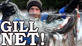 Survival GILL NETTING (Usually ILLEGAL!) | Rare Underwater Footage