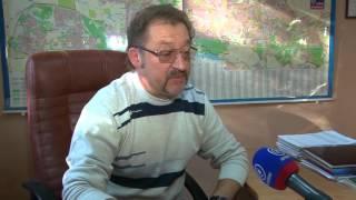 Проблема бездомных собак в Донецке (озвучка на английском)