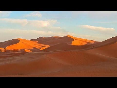 Algeria reaffirms support for self-determination of Western Sahara