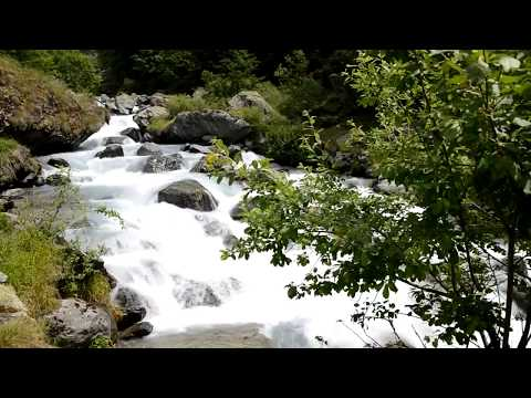 Relaxants Torrent et Cascade en Forêt - Sommeil Profond et Détente - Etude Méditation Yoga - 2 Hrs