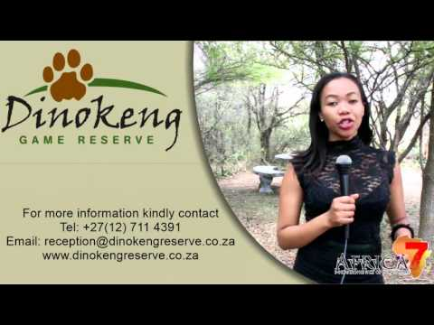 Dinokeng Game Reserve - Business Card - Africa 7