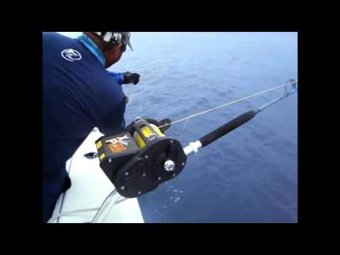 Kristal Fishing Reels Video
