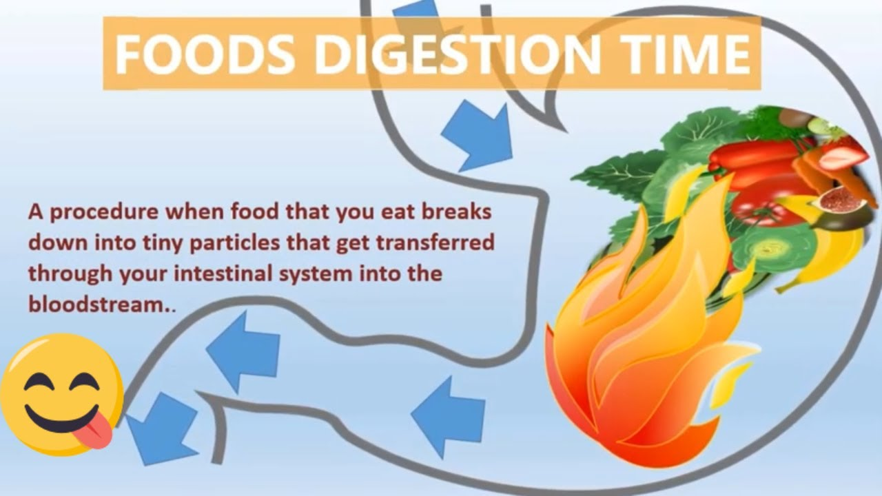 how long does it take to digest vegetables