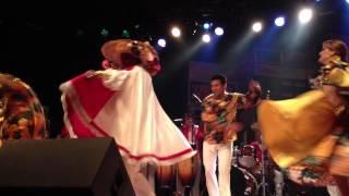 Pinduca - Sinhá Pureza (ao vivo no Festival Invasão Paraense)