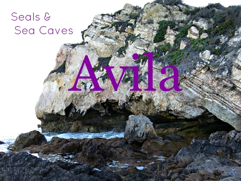 Avila Beach     Adventure Local