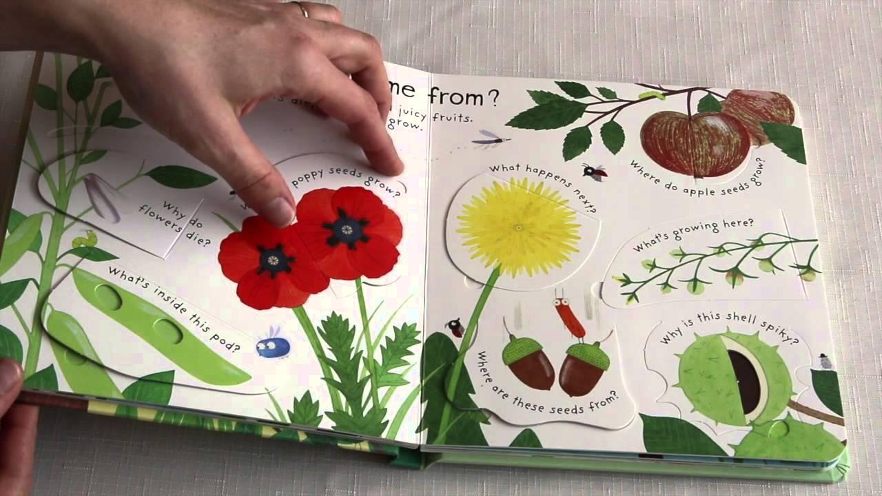 how do flowers grow? usborne books  more, Natural flower